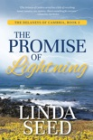 The Promise of Lightning book summary, reviews and downlod