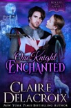One Knight Enchanted book summary, reviews and downlod