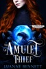 The Amulet Thief book image