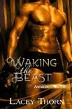 Waking the Beast e-book