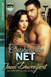 Crashing the Net book summary, reviews and downlod