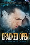 Cracked Open book summary, reviews and downlod