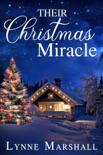 Their Christmas Miracle e-book