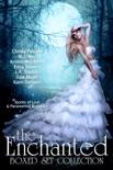 The Enchanted Box Set Collection e-book