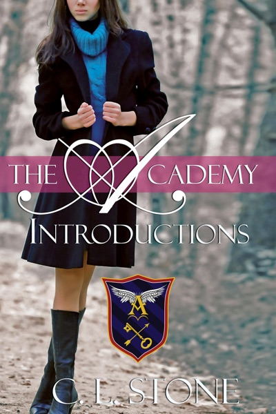 The Academy - Introductions by C. L. Stone Book Summary, Reviews and E-Book Download