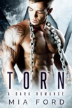 Torn book summary, reviews and downlod
