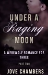 Under a Raging Moon: Part Two book summary, reviews and downlod