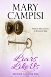 Liars Like Us book summary, reviews and downlod