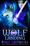 Wolf Landing book summary, reviews and downlod