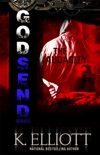 Godsend 12: The Audacity book summary, reviews and downlod