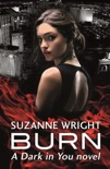 Burn book summary, reviews and download