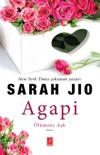 Agapi (Özel Ciltli Baskı) book summary, reviews and downlod