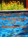How to Take Care of a Saltwater Pool book summary, reviews and download