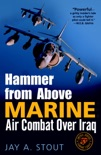 Hammer from Above book summary, reviews and download