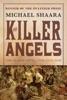 The Killer Angels book image