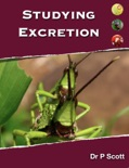 Studying Excretion book summary, reviews and download