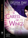 A Caress of Wings book summary, reviews and downlod