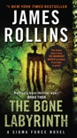 The Bone Labyrinth book summary, reviews and downlod