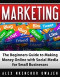 Marketing: The Beginners Guide to Making Money Online with Social Media for Small Businesses book summary, reviews and download