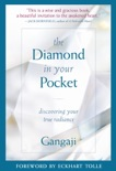 The Diamond In Your Pocket book summary, reviews and download