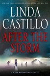 After the Storm book summary, reviews and download
