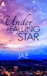 Under a Falling Star book summary, reviews and download