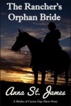 The Rancher's Orphan Bride book summary, reviews and download