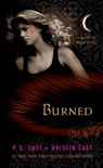 Burned book summary, reviews and download