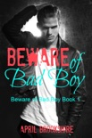 Beware of Bad Boy book summary, reviews and download