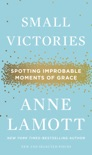 Small Victories book summary, reviews and download