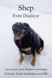 Shep Evini Düşlüyor book summary, reviews and downlod