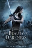 The Beauty of Darkness e-book