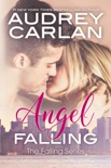 Angel Falling book summary, reviews and downlod
