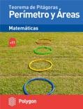 Perímetros y áreas descarga de libros electrónicos