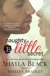 Naughty Little Secret book summary, reviews and downlod