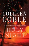 Holy Night book summary, reviews and downlod