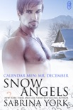 Snow Angels book summary, reviews and downlod