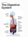 The Digestive System book summary, reviews and download