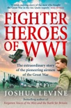 Fighter Heroes of WWI book summary, reviews and download
