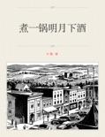 煮一锅明月下酒 book summary, reviews and download