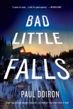 Bad Little Falls book summary, reviews and download