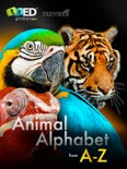 Animal Alphabet book summary, reviews and download
