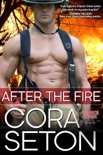 After The Fire book summary, reviews and downlod