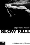 Slow Fall book summary, reviews and download
