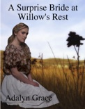 A Surprise Bride in Willow's Rest book summary, reviews and download