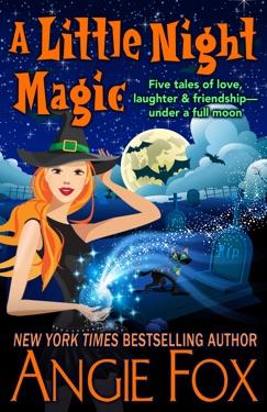 A Little Night Magic E-Book Download