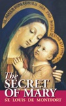 The Secret of Mary book summary, reviews and download