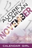 November book summary, reviews and downlod