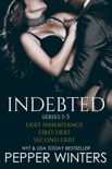 Indebted Series 1-3 book summary, reviews and downlod