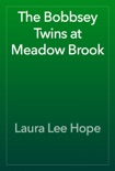 The Bobbsey Twins at Meadow Brook book summary, reviews and download